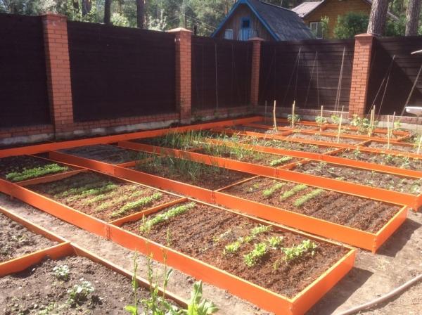 Садовые евро грядки 22 см